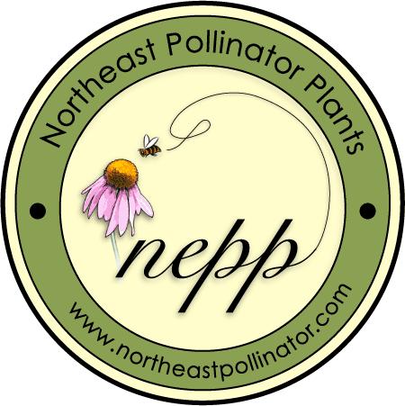 Logo-NEPP-1_2_2016